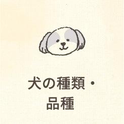 犬の種類・品種