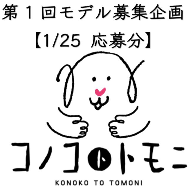 【モデル募集】我が家のコノコ大公開②【2019/1/25応募分】