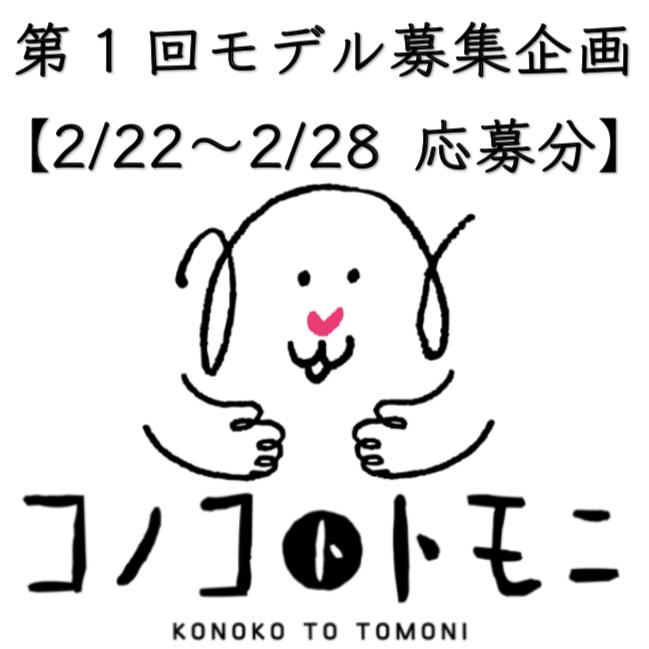 【モデル募集】我が家のコノコ大公開⑦【2019/2/22〜2/28応募分】