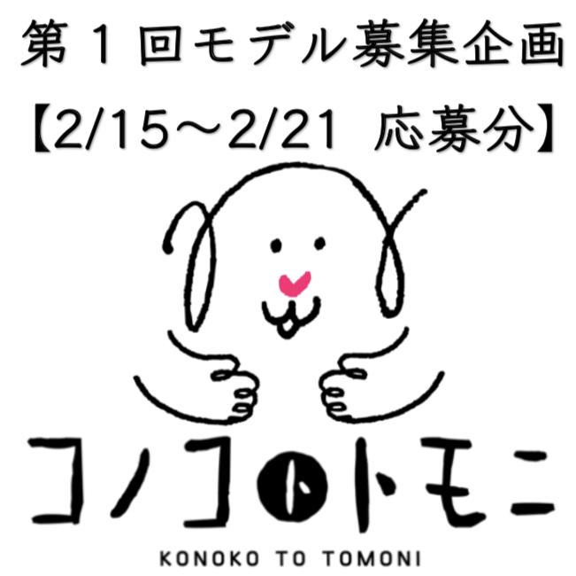 【モデル募集】我が家のコノコ大公開⑥【2019/2/15〜2/21応募分】